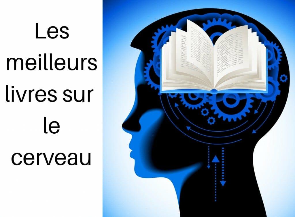Les meilleurs livres sur le cerveau -développement personnel - le jardin de db